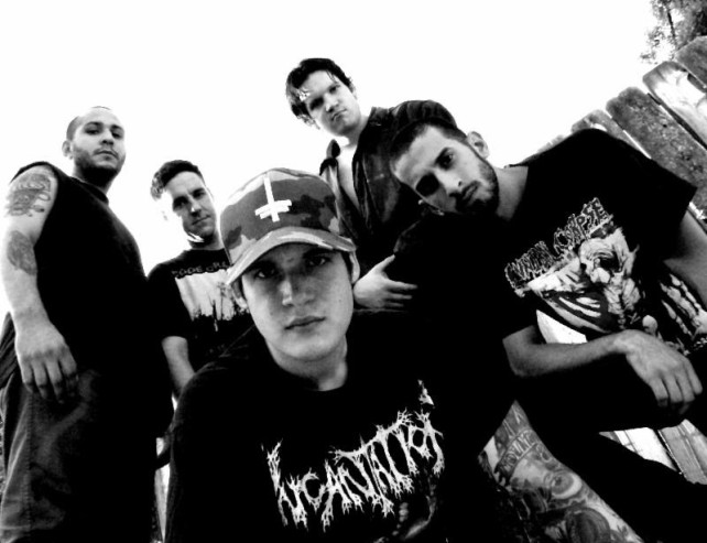 Twitching Tongues - 2014