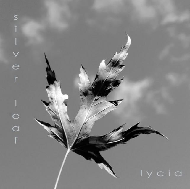 lycia - silver leaf