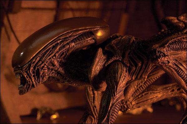 alien_xenomorph