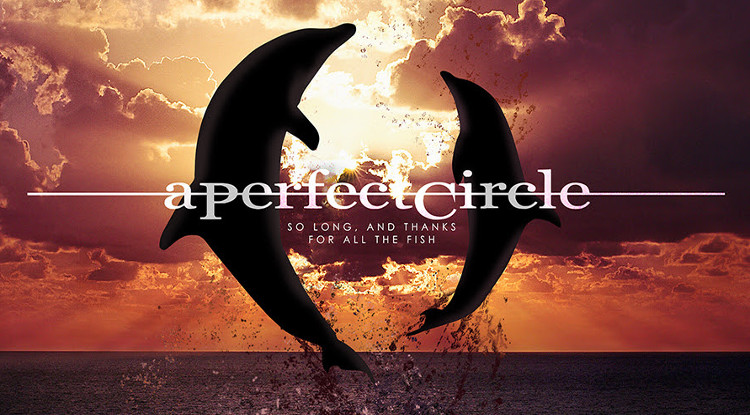 a_perfect_circle_so_long_and_thanks_for_all_the_fish_single_cover 750