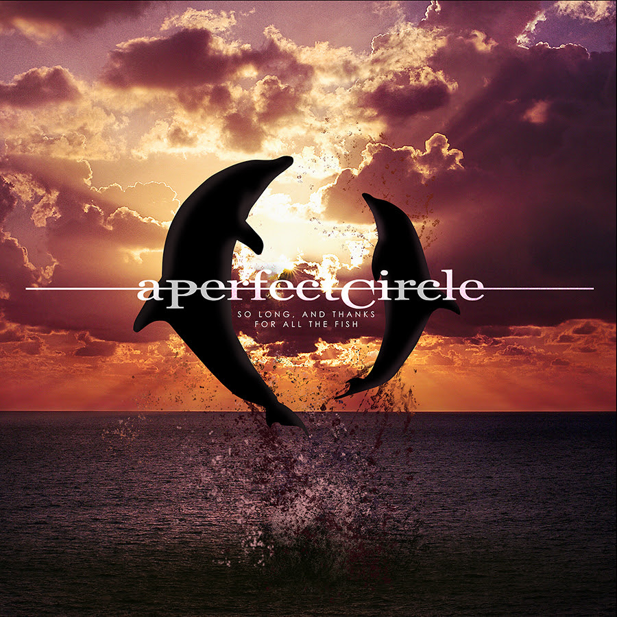a_perfect_circle_so_long_and_thanks_for_all_the_fish_single_cover